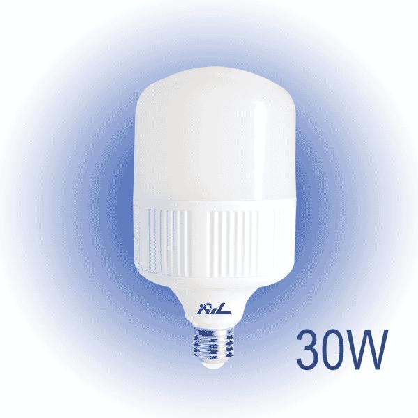 لامپ TS1 حبابی 30 وات مهتابی/آفتابی